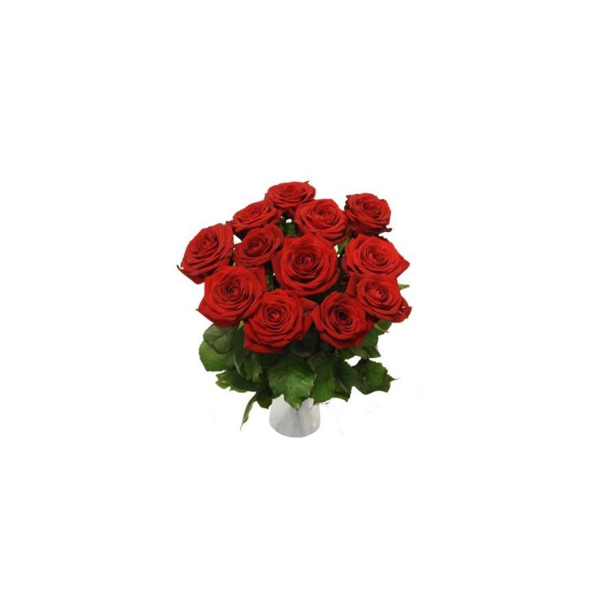12 Röda rosor