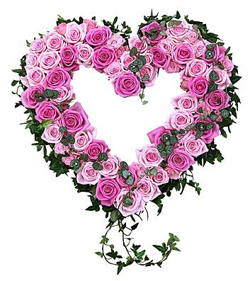 Hjärtformad dekoration av rosa rosor och murgröna hos Bellis blomsterhandel.