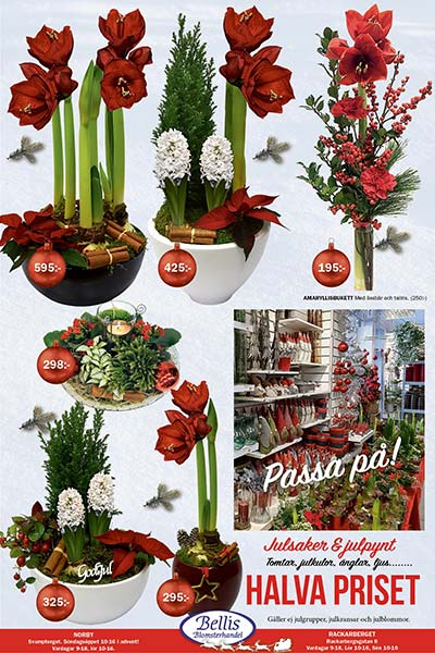 Julkampanj-Allt för advent, allt för julen