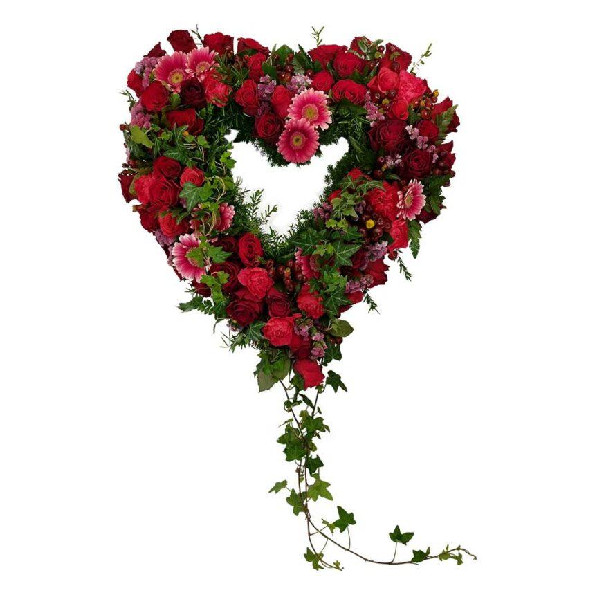 Begravningshjärta i röda, cerise och rosa toner dekorerat med slingor av murgröna hos Bellis blomsterhandel.