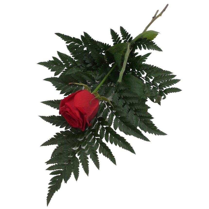 Handbukett röd ros hos Bellis blomsterhandel.