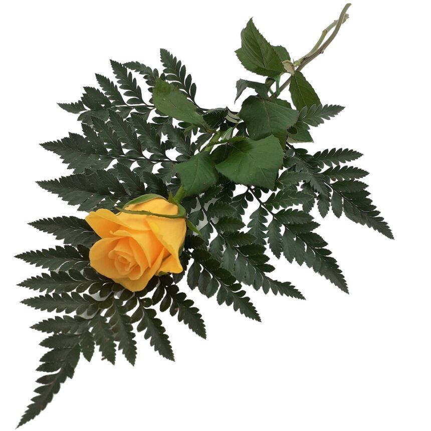 Handbukett gul ros hos Bellis blomsterhandel.